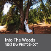 Into the woods weddings