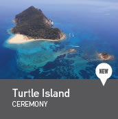 Turtle island weddings